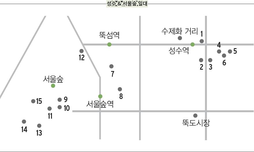 성수 & 서울숲 일대를 표현한 지도