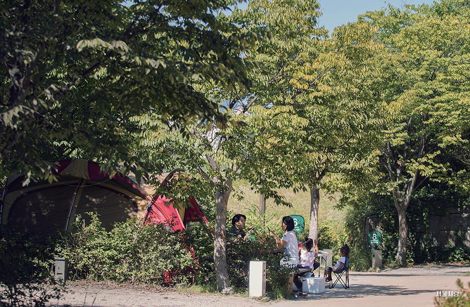 중랑캠핑숲 가족캠핑장