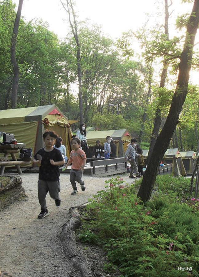 강동 그린웨이 가족 캠핑장