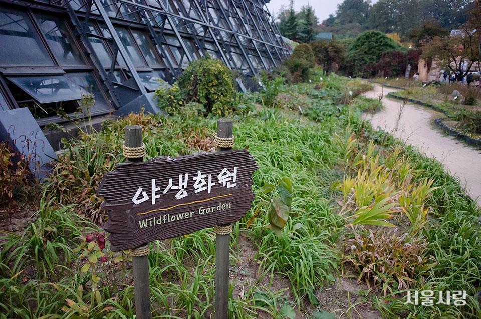 서울어린이대공원 식물원