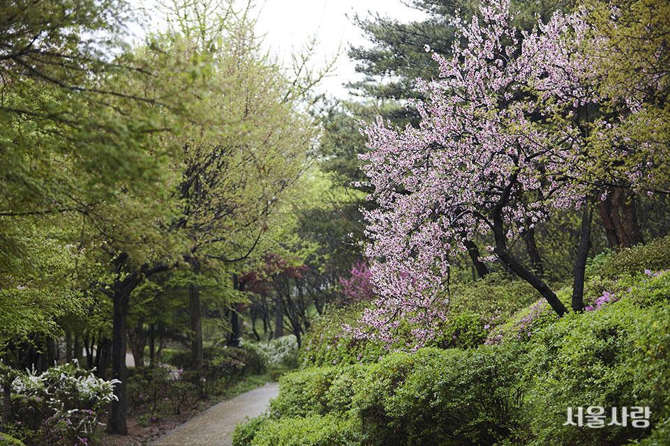 남산야외식물원