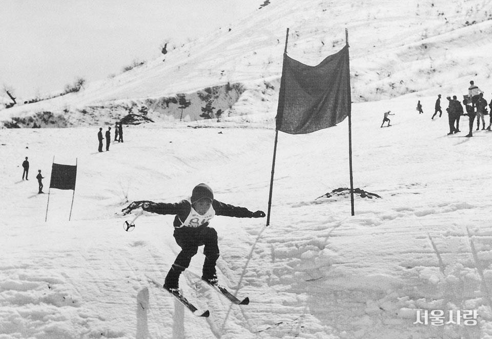 1959년 대관령에서 열린 제40회 전국동계체육대회 스키 활강 경기.