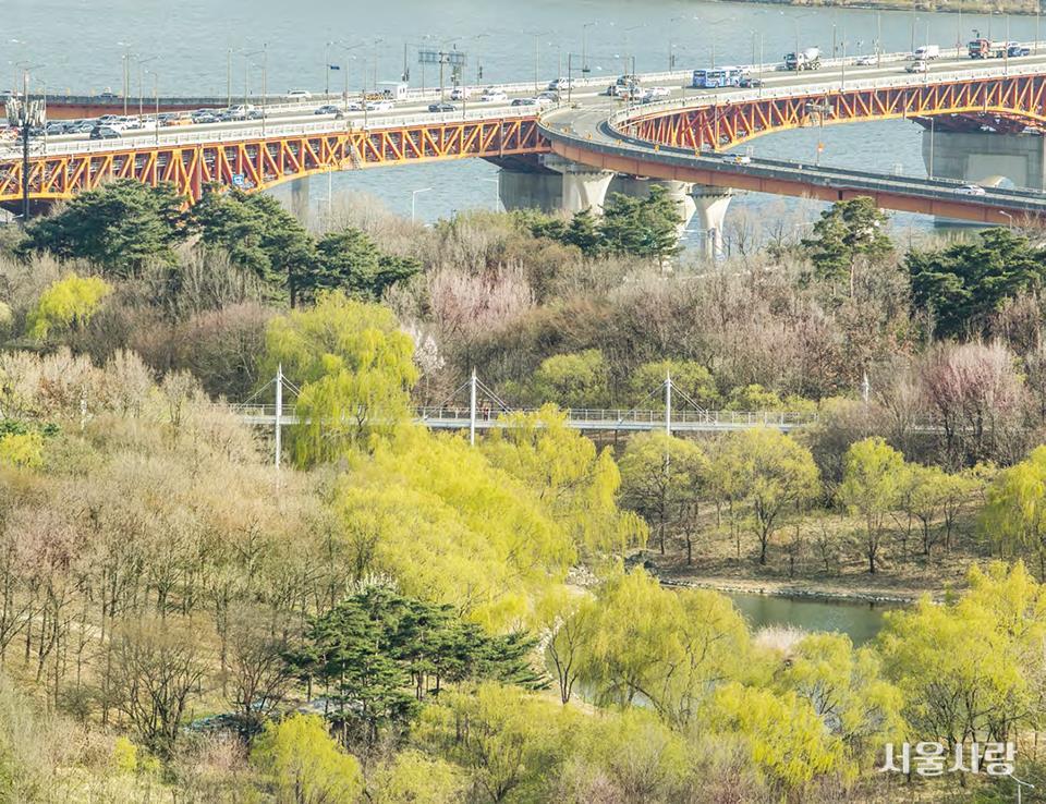 서울숲 생태공원 전경
