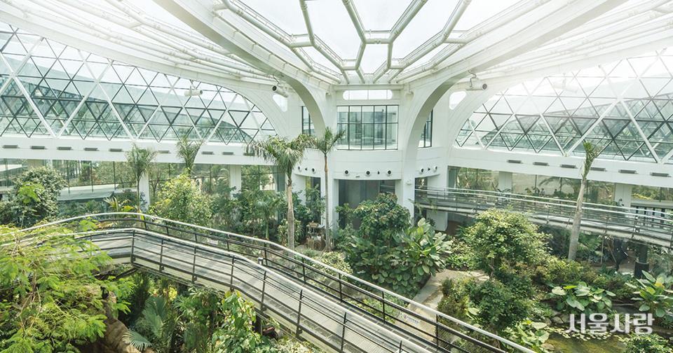 서울식물원 온실 지중해관