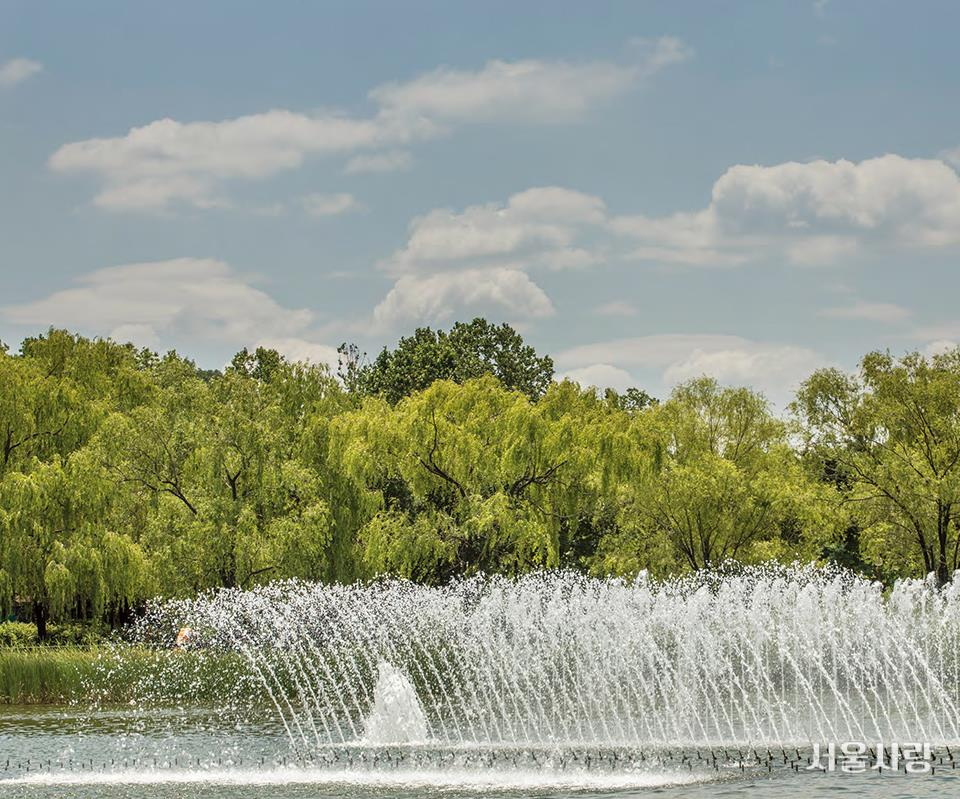 분수의 물줄기와 뜨거운 태양이 어우러진다. 상암 평화의공원 조형분수
