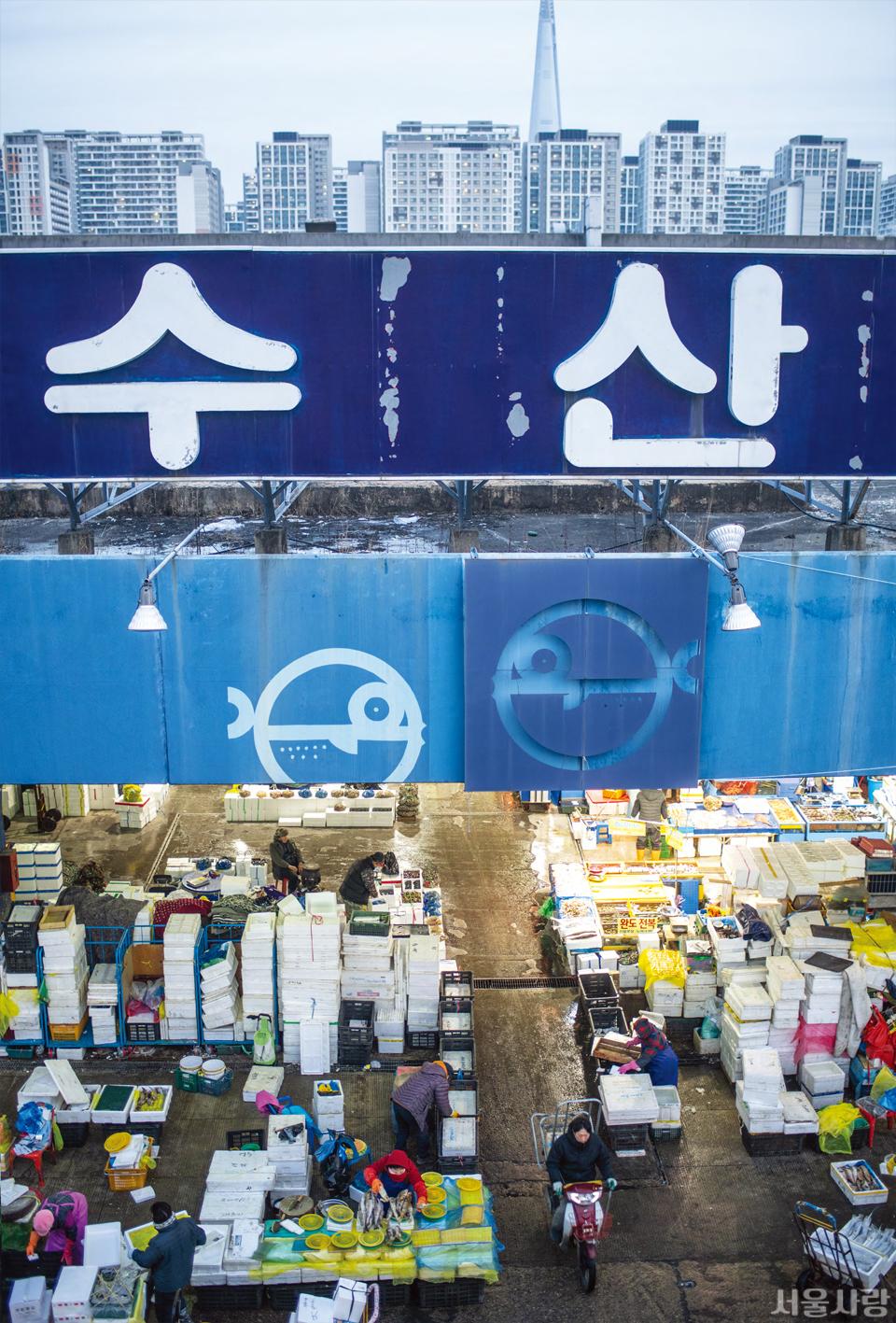 서울의 아파트 숲과 이웃한 가락동농수산물종합도매시장의 아침 풍경