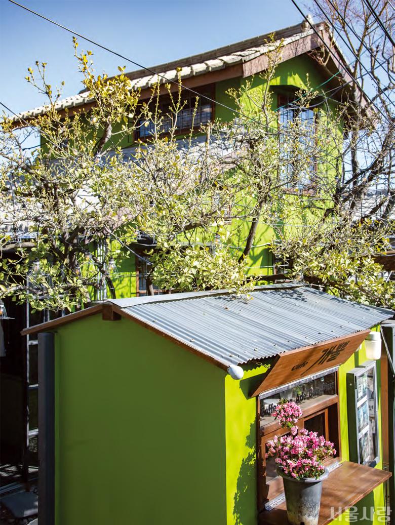 aT화훼공판장에서는 꽃과 나무를 가까이에서 만날 수 있다.