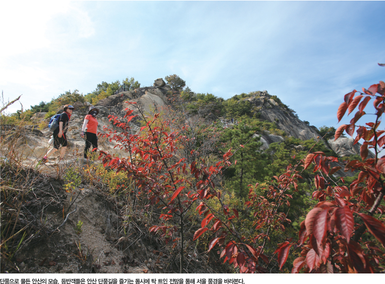 단풍으로 물든 안산의 모습. 등반객들은 안산 단풍길을 즐기는 동시에 탁 트인 전망을 통해 서울 풍경을 바라본다.