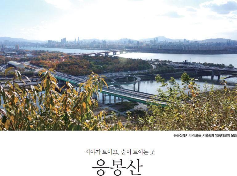 응봉산에서 바라보는 서울숲과 영동대교의 모습, 시야가 트이고, 숨이 트이는 곳 응봉산