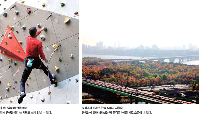 좌 : 응봉산암벽등반공원에서 암벽 등반을 즐기는 사람도 쉽게 만날 수 있다. , 우 : 정상에서 바라본 한강 상류와 서울숲. 응봉산에 올라 바라보는 밤 풍경은 아름답기로 소문이 나 있다.